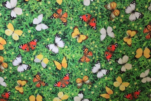 Tissu imprimé en 140cm Papillons-6854